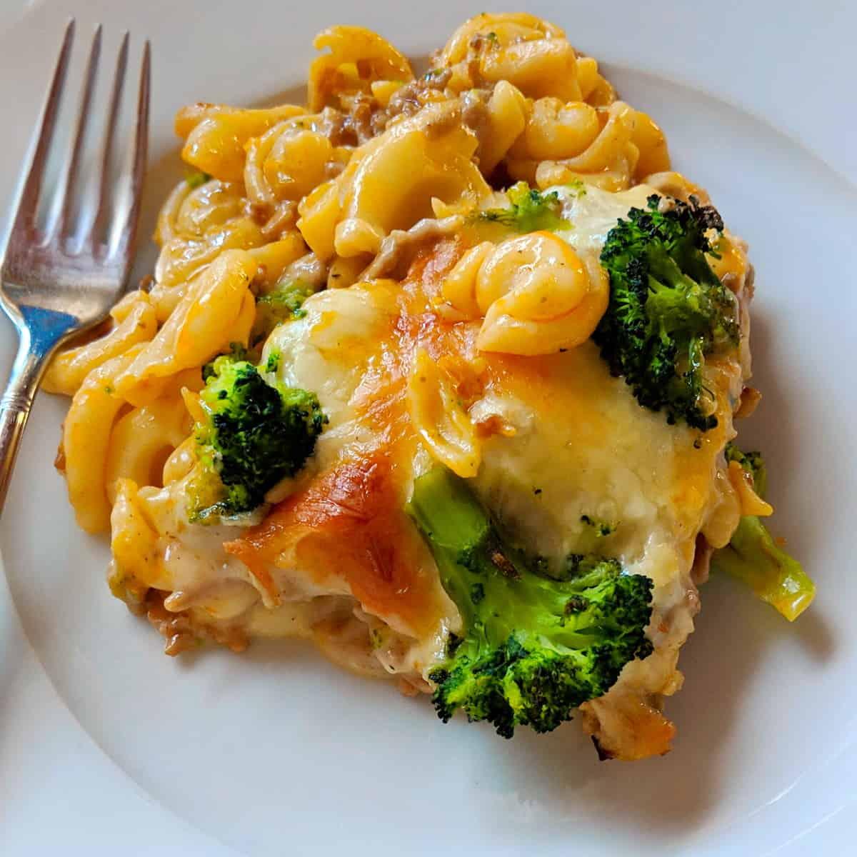 Ein weisser Teller mit dem Brokkoli-Nudel-Auflauf mit Hackfleisch.