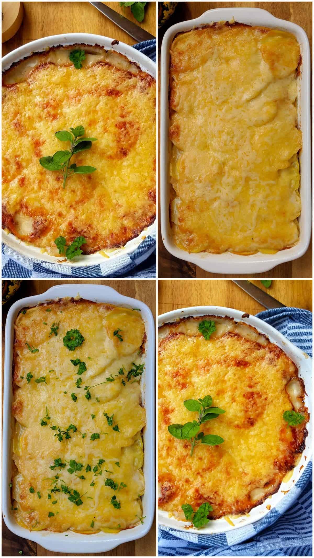 Eine Collage von vier Auflaufformen mit Kartoffelgratin.