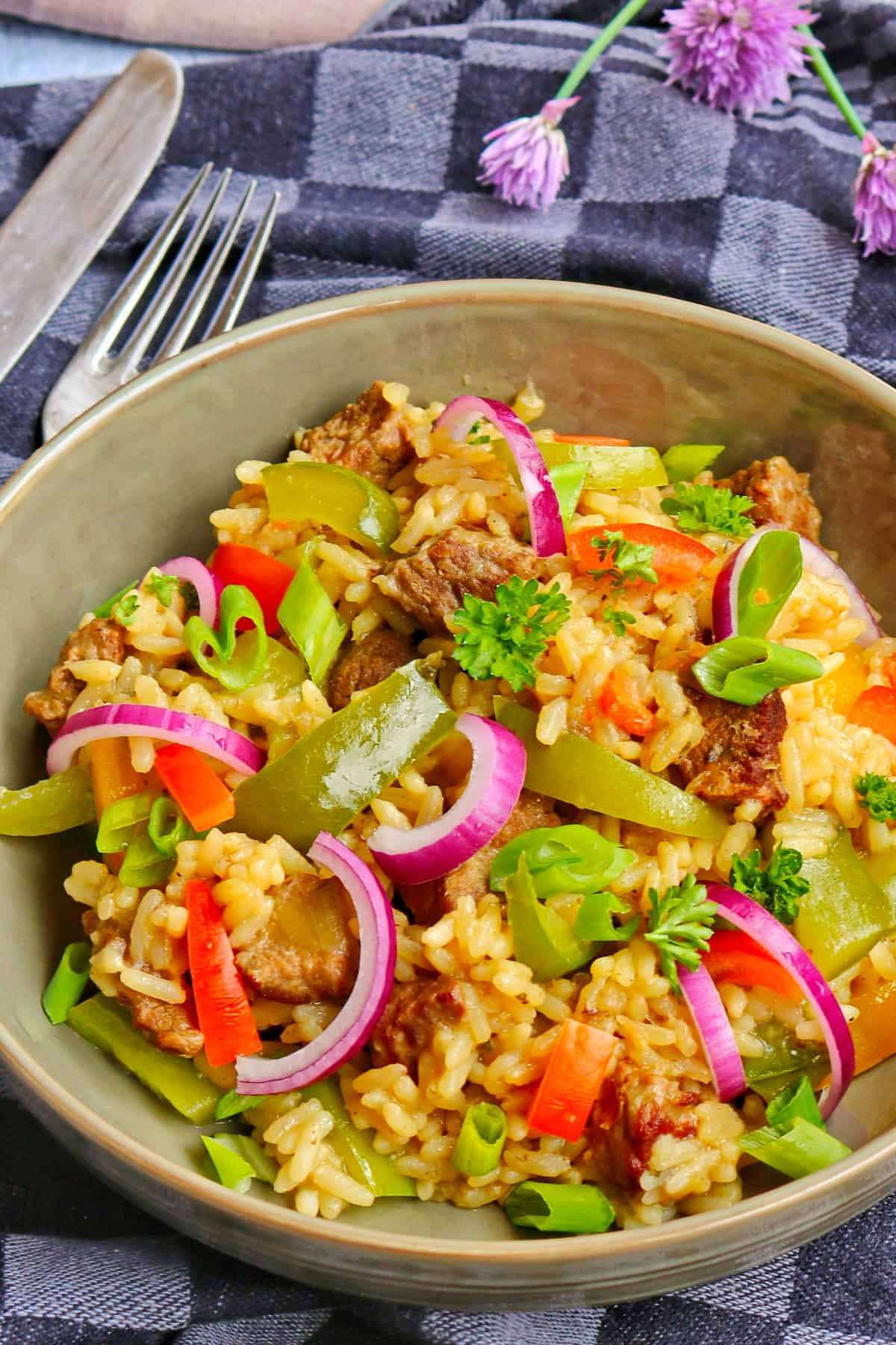 Ein tiefer Teller mit Reisfleisch.