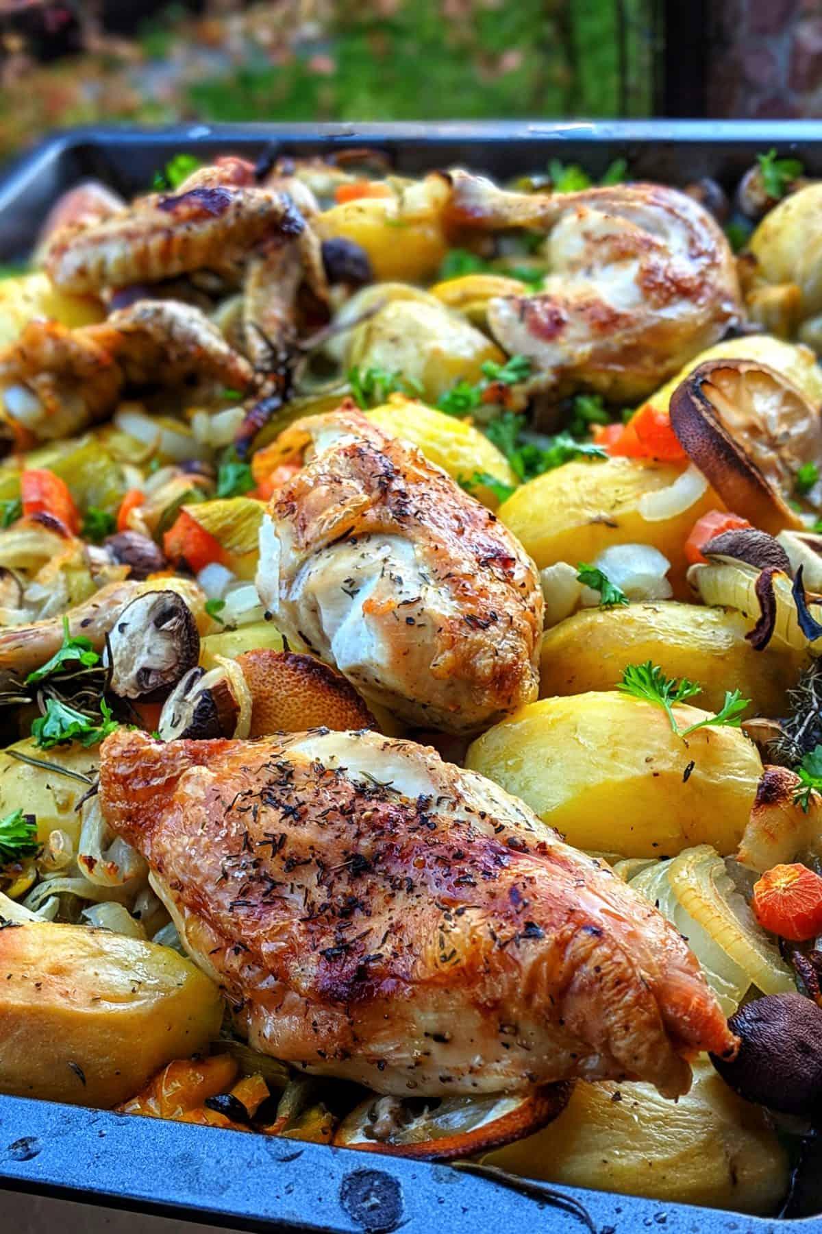 Der Inhalt einer Auflaufform mit Ofen-Hähnchen, Kartoffeln und Gemüse